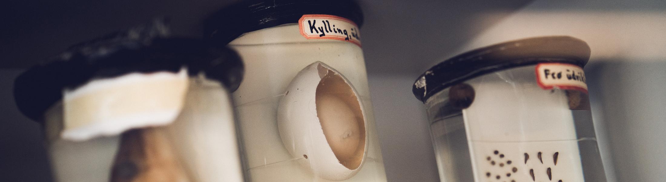 Foto af æg lagt i et glas med sprit.