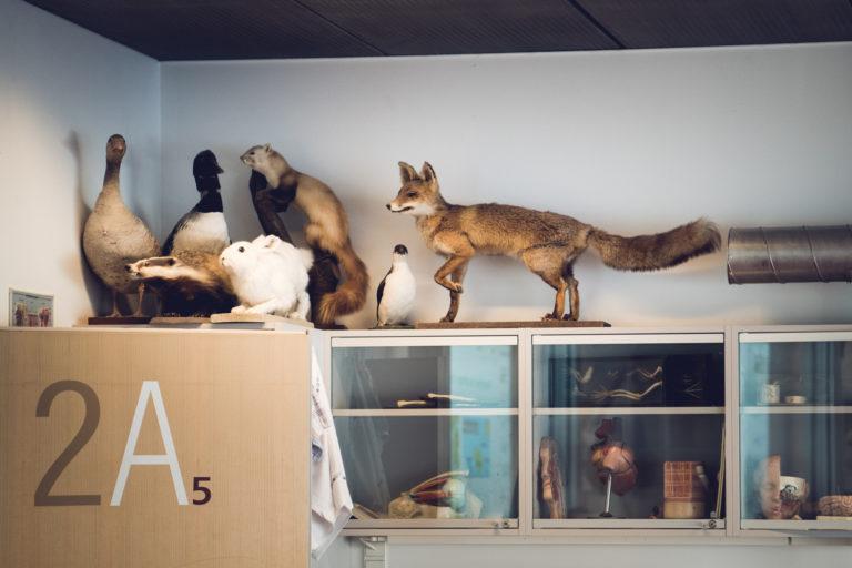 Naturvidenskabslokale